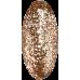 CCO Shellac Gilt Ring 68503